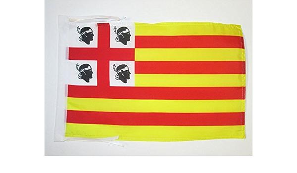 AZ FLAG Bandera de la Corona DE ARAGÓN EN CERDEÑA 45x30cm - BANDERINA SARDA 30 x 45 cm cordeles: Amazon.es: Hogar