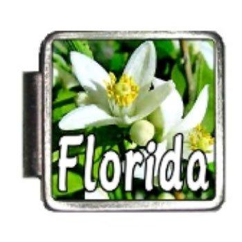 Florida State Flower Orange Blossom Photo Italian Charm Bracelet Link - Florida Italian Charm