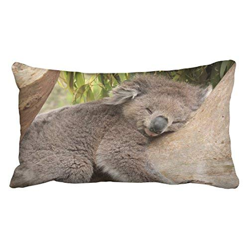 Custom Decorative Standard Pillow Case Animals Koala Bear Tree Sleeps Bamboo Leaves Size 20x30 inches Two Side BORGD