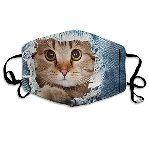 - Cute Denim Cat Unisex Environmental Anti Dust Mask Reusable Blizzard Proof Masks Warm Windproof Mask For Mens And Women