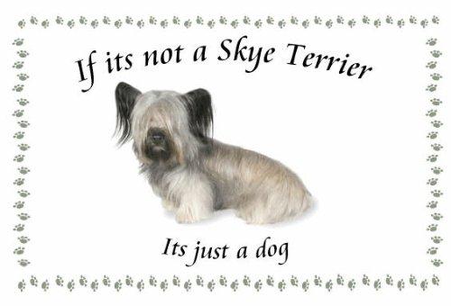 Skye Terrier-Chien fantaisie insolite porte-clefs si sa Pas