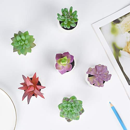 Lvydec 6 Pack Artificial Succulent Plants, Mini-Sized Fake Succulent Plants in Pots for Home Bath Office Shelf Decoration, Porcelain Pots