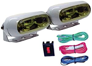 Anderson Marine E582-2W Light Kit by Anderson Marine