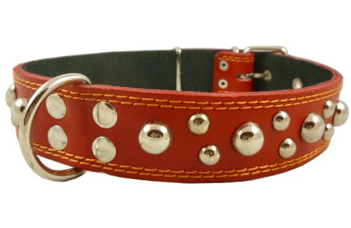 Genuine 1.6″ Wide Thick Leather Studded Dog Collar. Fits 19″-23″ Neck, Large Breeds Rottweiler, Pit Bull., My Pet Supplies
