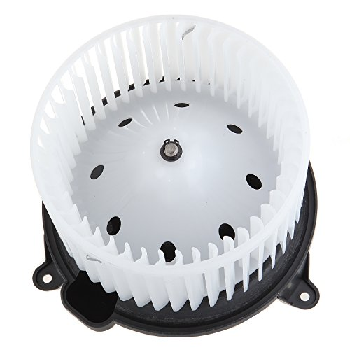 HVAC Plastic Heater Blower Motor ABS w/Fan Cage ECCPP for 2008 Ford F-150/2003-2006 Ford Expedition/2004-2007 Ford F-150/2006-2008 Lincoln Mark LT/2003-2006 Lincoln Navigator