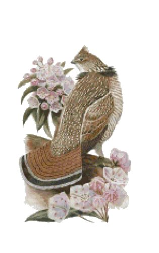 Pennsylvania State Bird (Ruffed Grouse) and Flower (Mountain Laurel) Counted Cross Stitch Pattern