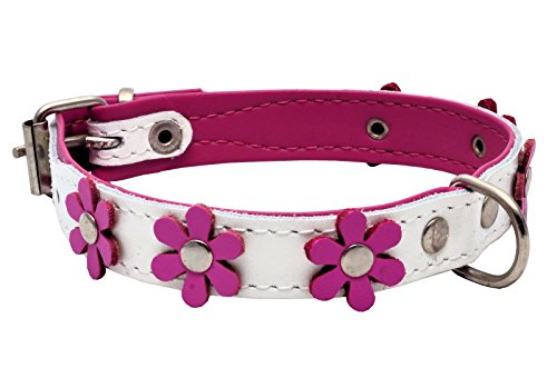 Real Leather Daisy Flowers Dog Collar (White/Pink, 11.5