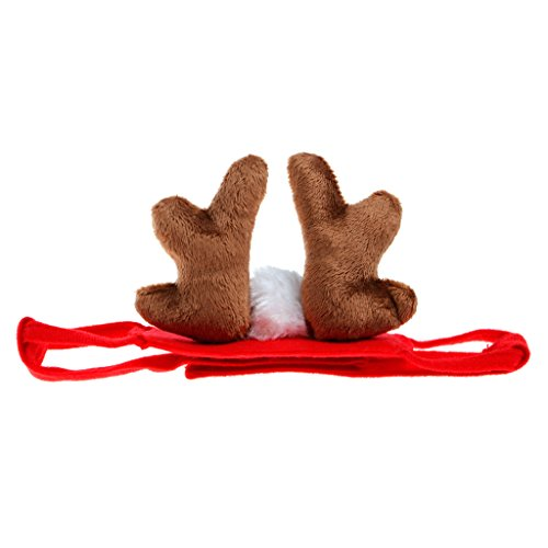 Itemap Pet Dog Puppy Cat for Puppy Teddy Animal Shapeshift Christmas Reindeer Costume (Dog Halloween Parade Dallas)