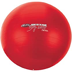 Weaver Leather Stacy Westfall Activity Ball, Large, Red