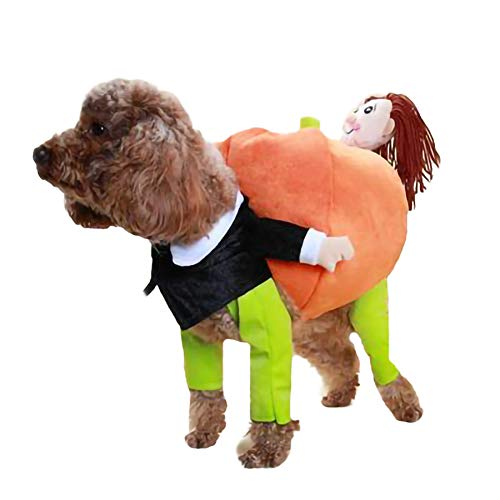 RZJ Pet Costume Funny Clothes Little Man Holding a Pumpkin Halloween Comfortable Casual for Daily Party Holiday Photo Shoots,S