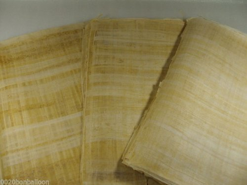20 Blank Egyptian Papyrus Sheets for Art Projects and Schools 8x12in 20x30cm [並行輸入品]   B07T8P9RTR