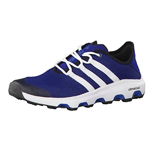 Adidas Terrex Cc Voyager, Chaussures de Trail Homme, Bleu (Azumis/Ftwbla/Azubas), 42 EU