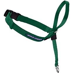 PetSafe Gentle Leader Headcollar, Small, Green