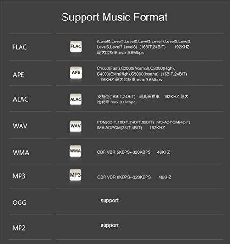 1h2o ONN X5 Profesional Lossless música MP3 HIFI reproductor de música de 8 GB: Amazon.es: Electrónica