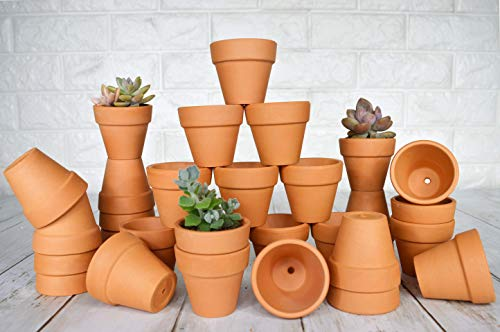 My Urban Crafts 32 Pcs Small Mini Clay Pots 2'' Mini Terra Cotta Pots Clay Ceramic Pottery Planters Cactus Flower Pots Succulent Nursery Pots - Great for Tiny Plants, Crafts, Wedding Bridal Favors