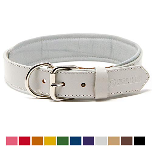 (Logical Leather Padded Dog Collar - Best Full Grain Heavy Duty Genuine Leather Collar - White - Large)