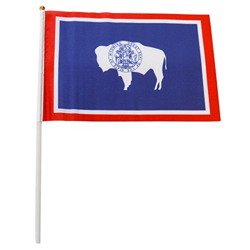 Wyoming Polyester State Flags Desk Outside Waving Parade 12-pack Hand or 12 inch x 18 inch Grommet (12-Pack Hand Flag)