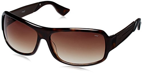 Image Rectangular Sunglasses (Brown) (IMS327C2SG)