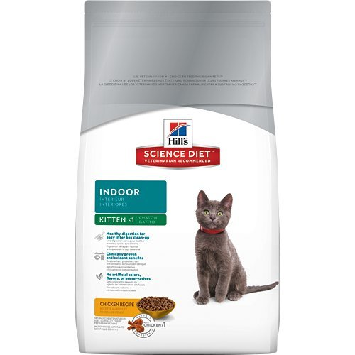 Hill S Science Diet Indoor Dry Kitten Food