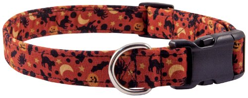 Country Brook Design Everything Halloween Designer Dog Collar - L