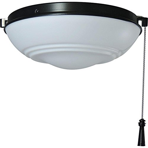 Hampton Bay Raleigh LED Natural Iron Light Kit Ceiling ()