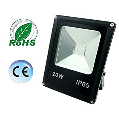 RGB, 50W No plug : New 50W 30W 20W 10W Outdoor Lighting Waterproof IP65 Floodlight Garden Remote Control RGB 220V 110V Led Flood Light Landscaping