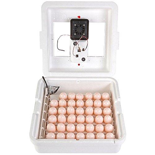 (LITTLE GIANT Deluxe Incubator w/Egg Turner)