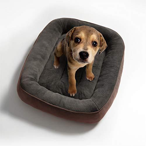 🥇 Bedsure Cama para Perros Pequeños Lavable M – Colchon Perro Cómoda de Felpa Muy Suave – Sofá de Perro 81x58x18cm