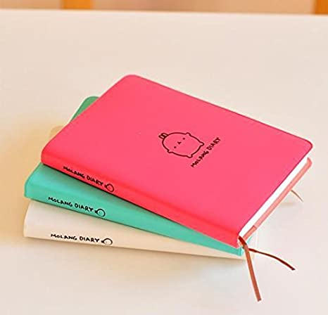 Amazon.com : Cute Rabbit Molang Plastic Cover Notebook ...