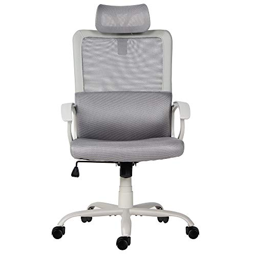 Sumgdesk Office Chair, Mesh Office Chair, Ergonomic Office Desk Chair Computer Task Chair with Adjustable Headrest (Best Computer Chair For Long Hours)