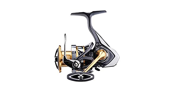 Daiwa Carretes de Pesca Exceler LT 4000 C-OT Spinning Boloñesa ...