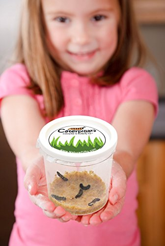 Nature Gift Store Live Butterfly Growing Kit: Shipped WITH 10 Live Caterpillars NOW, Pop-Up Cage, Book and Stickers BUNDLE by Nature Gift Store (Image #2)
