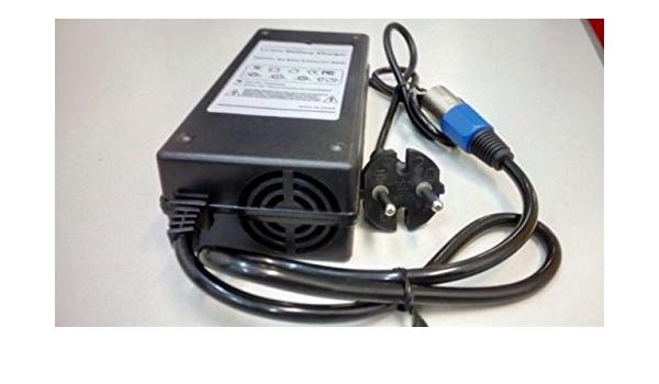 Cargador inteligente de 36V para patinete eléctrico Raycool y ...