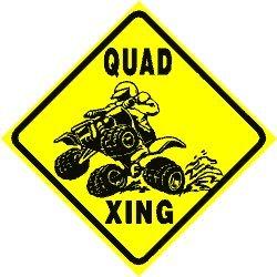 quad 4wheeler - 8