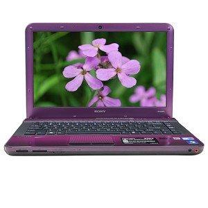 Purple Sony 14