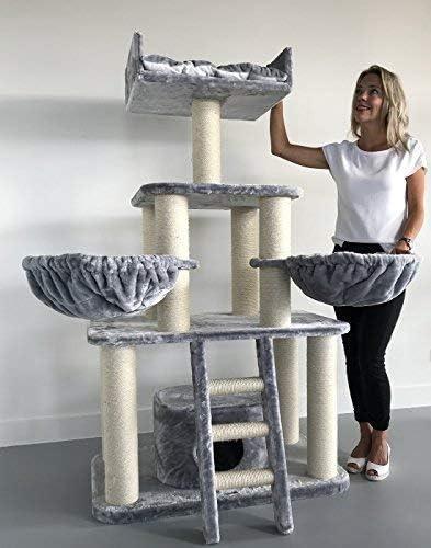 Rascador para gatos grandes Panther Gris claro baratos arbol xxl maine coon gato adultos con hamaca gigante sisal muebles sofa escalador torre Árboles rascadores cama cueva repuesto medianos: Amazon.es: Productos para mascotas