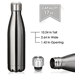 KING DO WAY Double Wall Vacuum Insulated Stainless Steel Water Bottle, 17 oz - Silver
