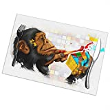 Affany Placemats for Dining Table, Heat Insulation Stain Resistant Table Mat Set of 6 Non Slip Washable Tray Mat Durable Place Mats for Kitchen Dining Room Table Decoration - Monkey with Rubiks Cube