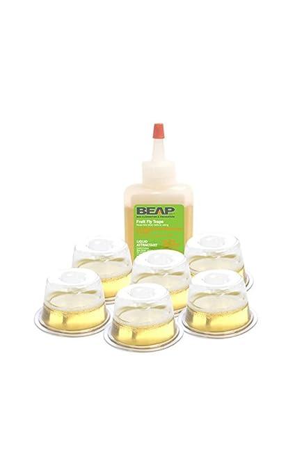 3704d53cee82d Amazon.com   BEAPCO Fruit Fly Traps