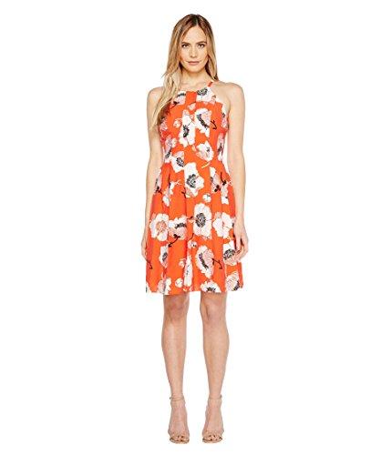 今晩鉄道駅何よりも[アドリアナパペル] Adrianna Papell レディース Grand Vintage Etching Print Seamed Fit and Flare Seamed Halter Dress ドレス Red Multi 4 [並行輸入品]