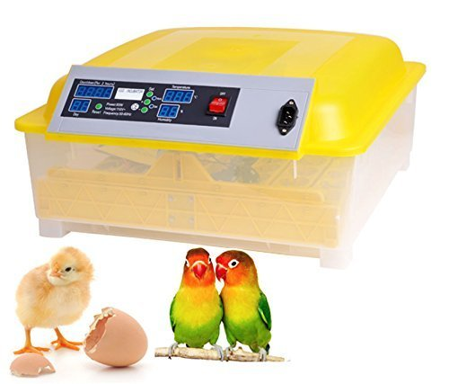 Meharbour Automatic 48 Digital Clear Egg Incubator Hatcher, 80W Egg Turning Temperature Controller for Chicken Poultry Duck Bird Egg, US Plug (48 Egg Incubator) (US STOCK)