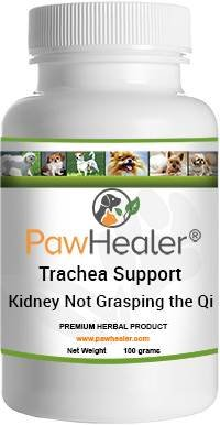Breathing Problems - Trachea Support: Kidney Not Grasping the Qi Formula - Herbal Remedy for Dogs with Breathing/Wheezing Difficulties