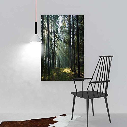 aolankaili Art The Picture for Home Decoration Frameless Misty Old Foggy Forest at Sunrise Art for Home Decorations Wall Decor W12 x H18