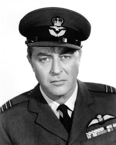Ray Milland in High Flight portrait in air force uniform 11x14 Aluminum Wall Art ()