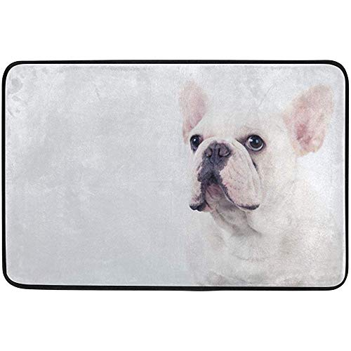 Staromil Doormats Area Rug for Indoor Outdoor Use, Adorable White French Bulldog Entry Front Door Mat Kitchen Bathroom Non Slip Rug 23.6x15.7 Inches