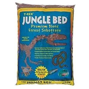 Amazoncom TREX JUNGLE BED QT Pet Habitat Substrate Pet - T rex bed