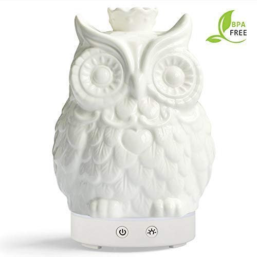 Round Rich Essential Oil Diffuser 120ml Cool Mist Humidifier -14 Color LED Nihgt Lamps - Crafts Ornaments All in One is The Upgrade Whisper-Quiet Operation Ultrasonic Ceramics Owl Humidifiers US120V