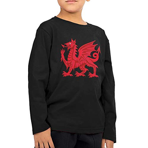 Welsh Dragon Infant Kids Crewneck Long Sleeve Shirt T-Shirt for Toddlers Black
