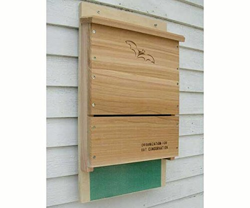 2 PACK Single Chamber OBC Bat House Kit by Songbird Essentials