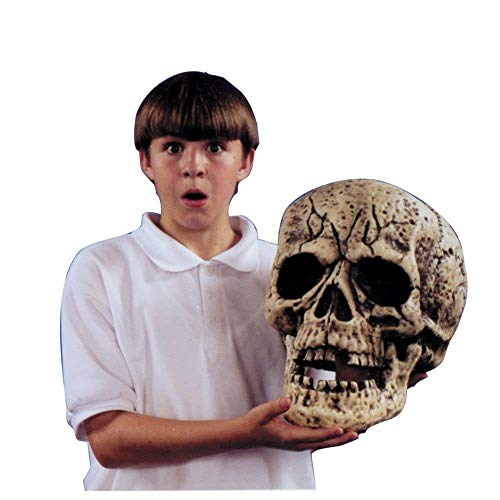 Costumes For All Occasions Va696 Skull Giant]()
